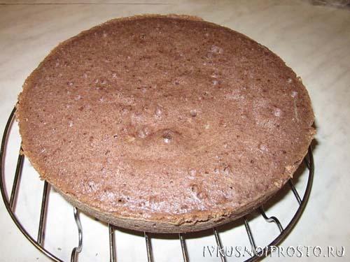 Торт Пинчер4