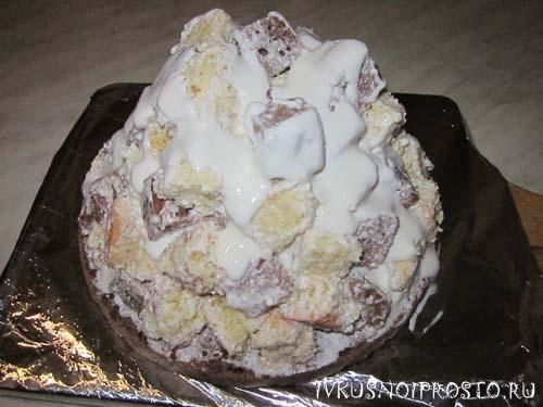Торт Пинчер7